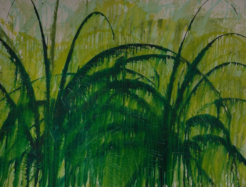 green-palm